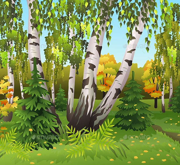 Autumn Landscape with Birch Trees - Seasons Nature