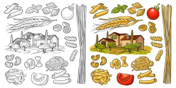Different Types Macaroni - Food Objects