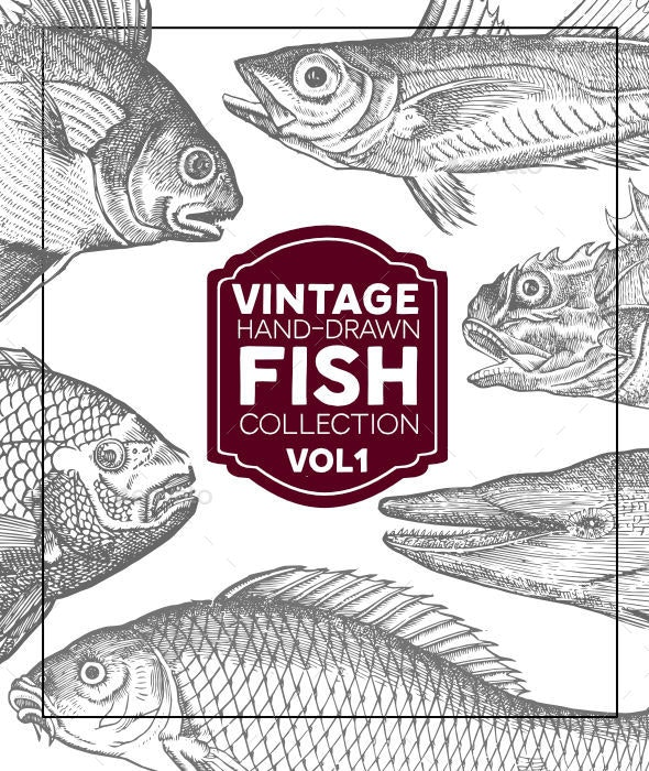 Vintage Fish Collection - Animals Characters