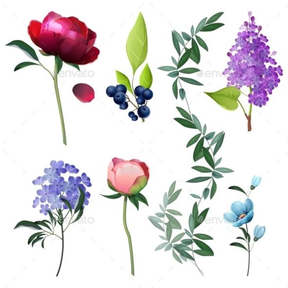 Flowers Collection Decorative Botanical Floral - Flowers & Plants Nature