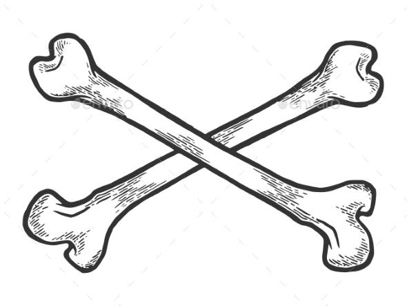 Crossed Bones Sketch Engraving Vector - Miscellaneous Vectors