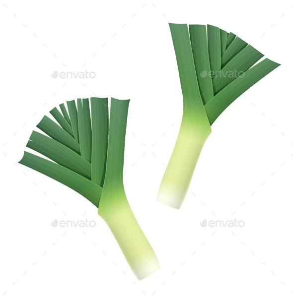 Onion Leek - Food Objects