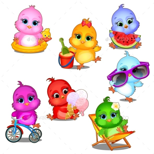 Set of Multicolored Chicks - Animals Characters