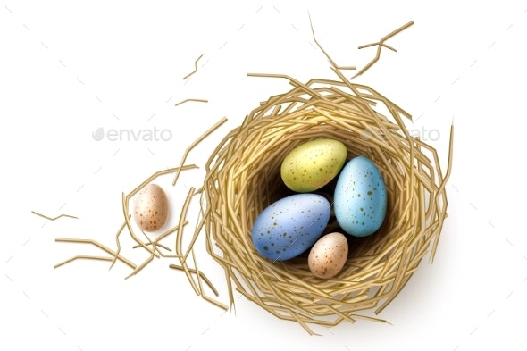 Vector Quail, Chicken Eggs in Nest Easter Holiday - Seasons/Holidays Conceptual