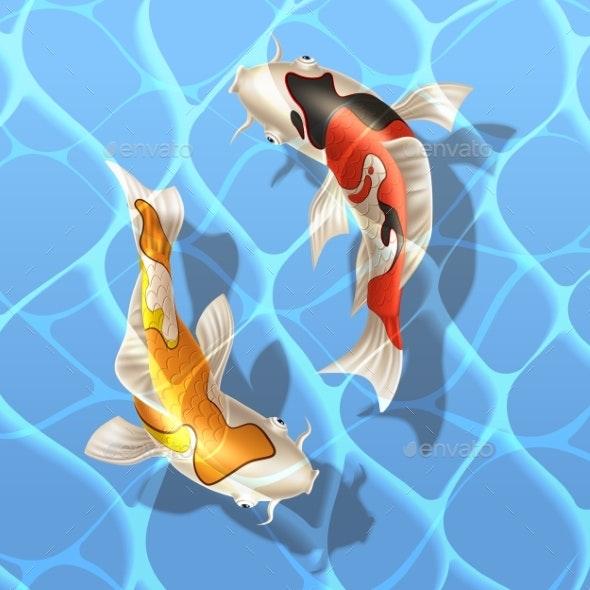 Vector Koi Carps Realistic Fish Eastern Symbol - Animals Characters