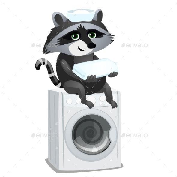 Raccoon Maid Sitting on Washing Machine Isolated - Animals Characters