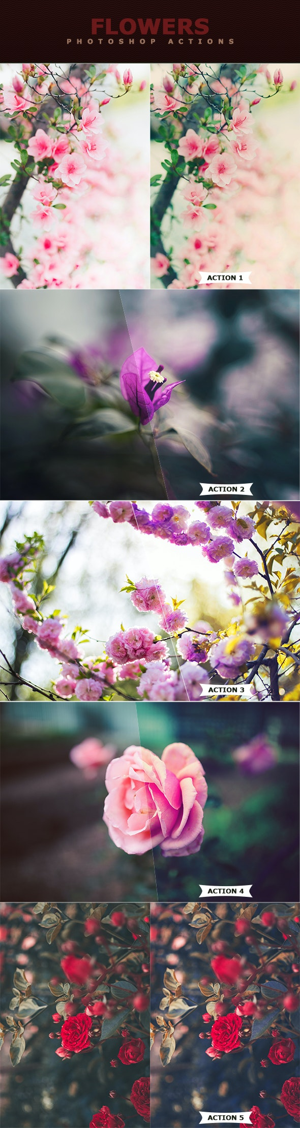 Flowers Photoshop Actions - Photo Effects Actions