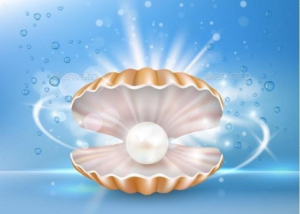 Marine Pearl Shell - Animals Characters