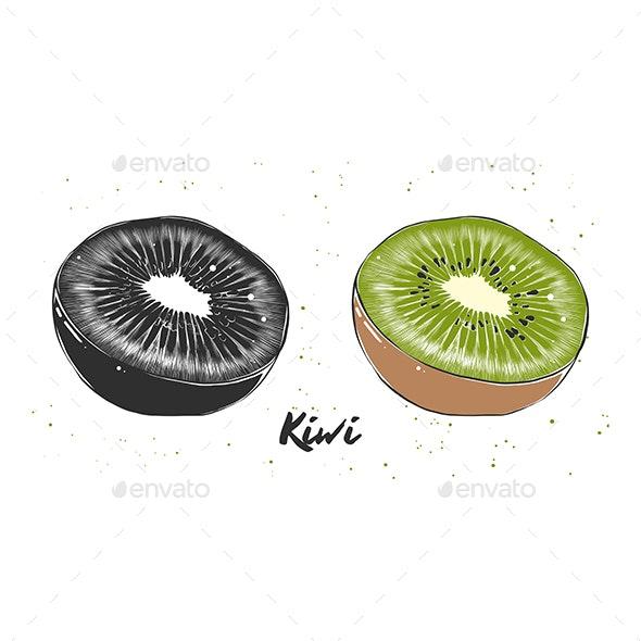 Hand Drawn Sketch of Kiwi - Food Objects