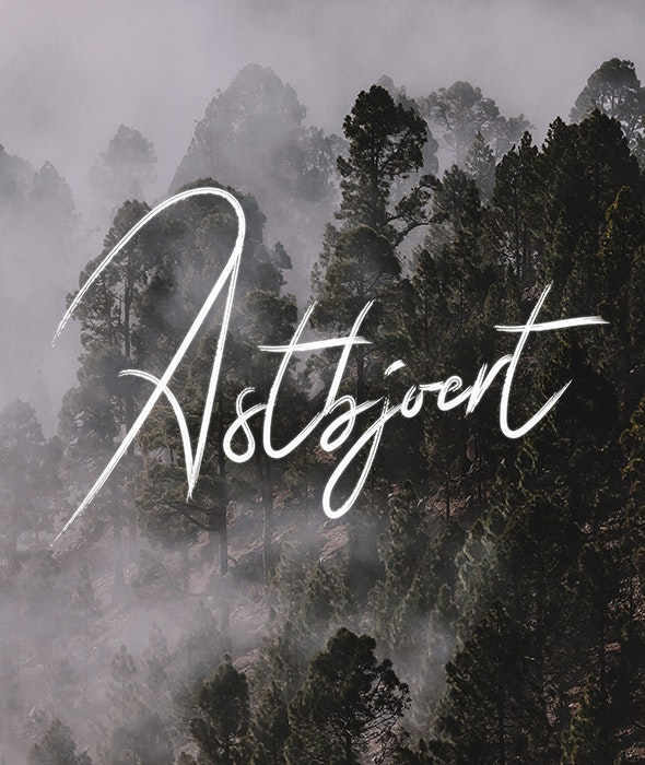 Astbjoert - Script Fonts