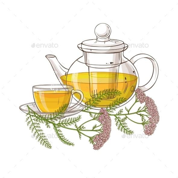 Yarrow Tea Illustration - Health/Medicine Conceptual