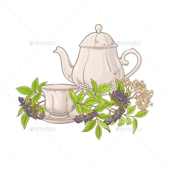 Elderberry Tea Illustration - Food Objects