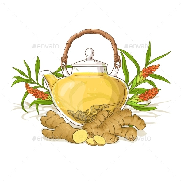 Ginger Tea Illustration - Food Objects