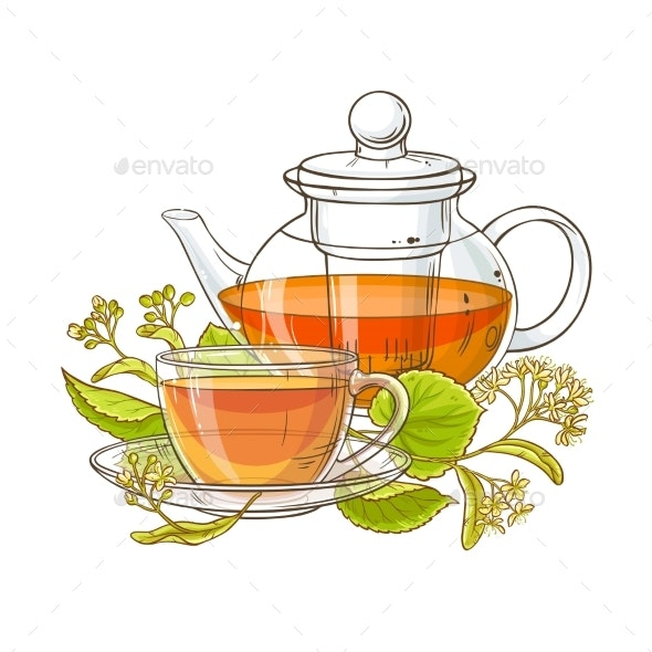 Linden Tea Illustration - Health/Medicine Conceptual