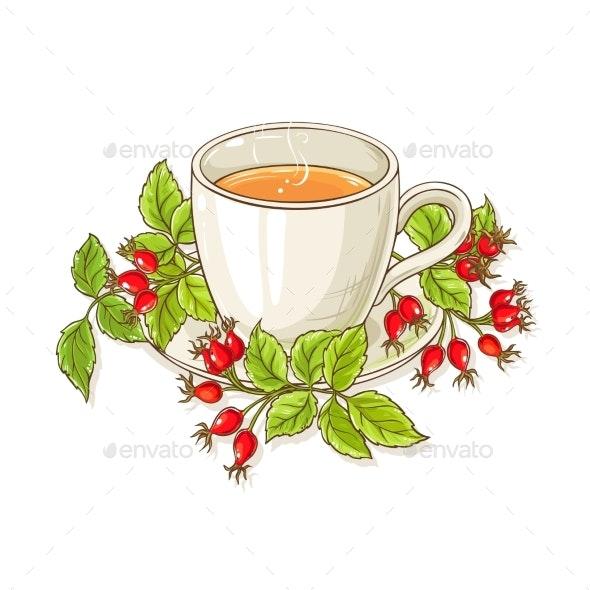 Wild Rose Tea Illustration - Food Objects