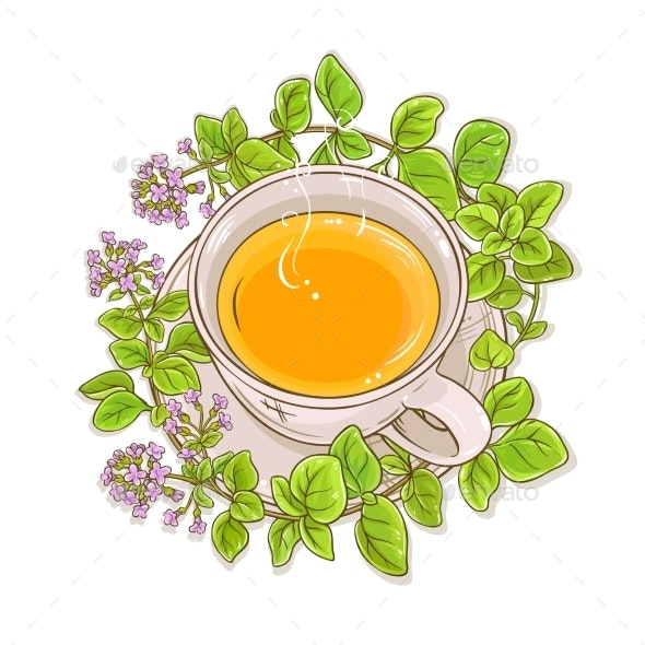 Oregano Tea Illustration - Food Objects