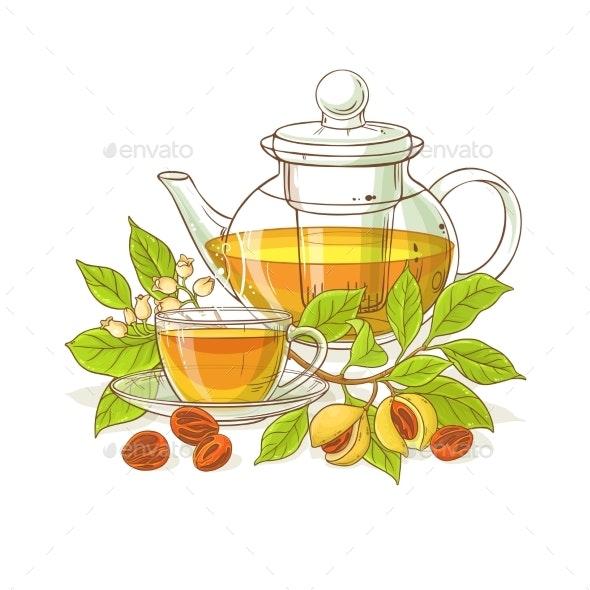Nutmeg Tea Illustration - Food Objects