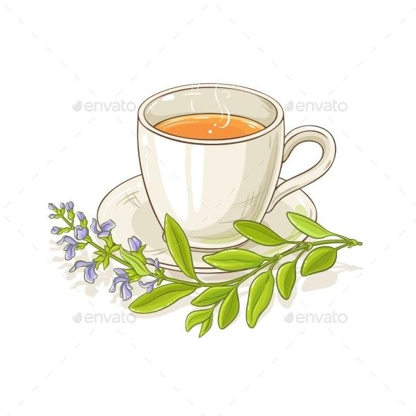 Sage Tea Illustration - Food Objects