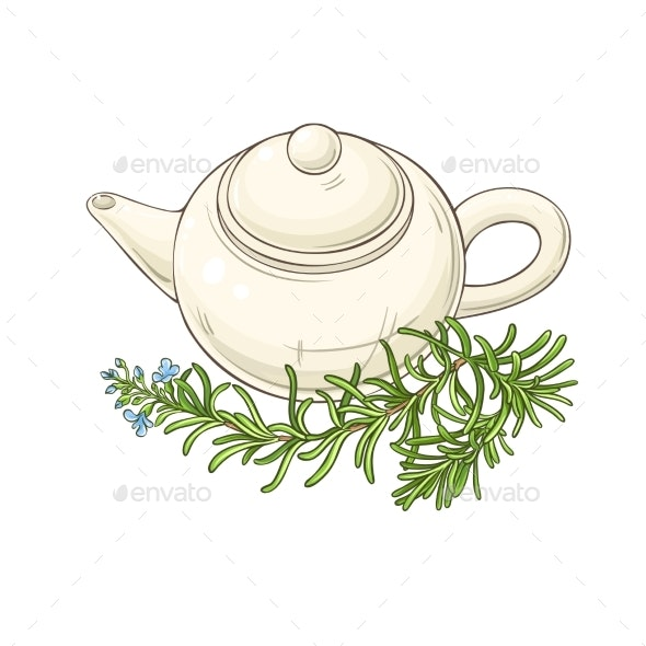 Rosemary Tea Illustration - Food Objects