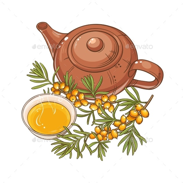 Sea Buckthorn Tea Vector - Food Objects