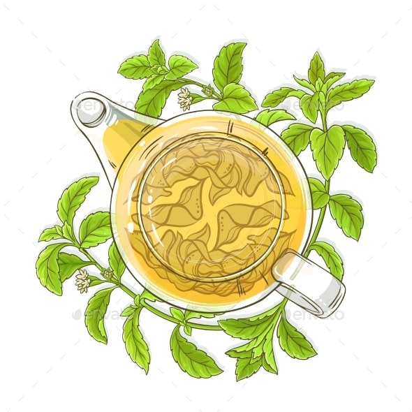 Stevia Tea in Teapot Illustration - Food Objects