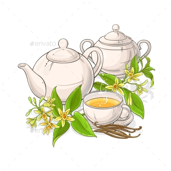 Vanilla Tea Illustration on White Background - Food Objects