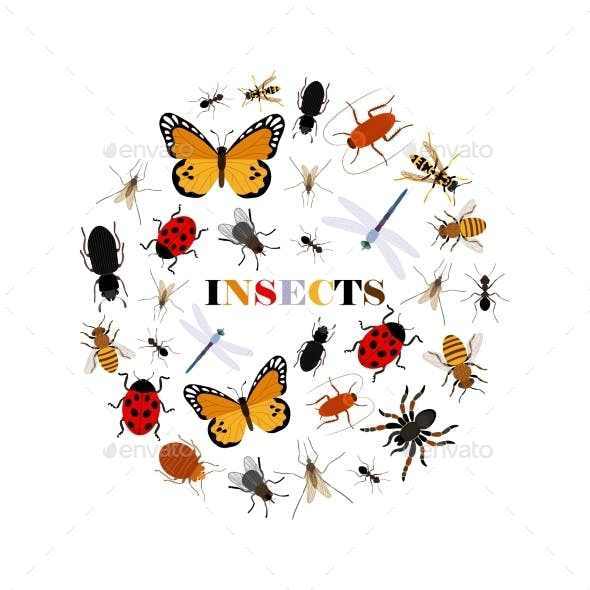 Flat Insects Vector Icons in Round Shape Isolated