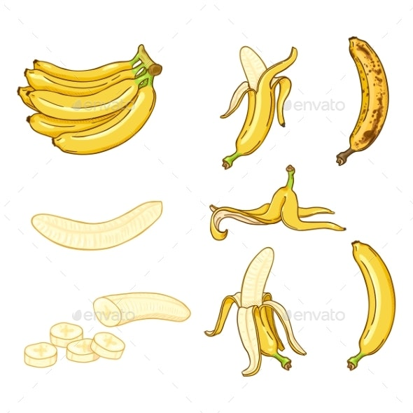 Vector Cartoon Set of Banana Illustrations - Food Objects