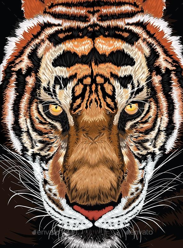 Tiger Illustration - Animals Characters