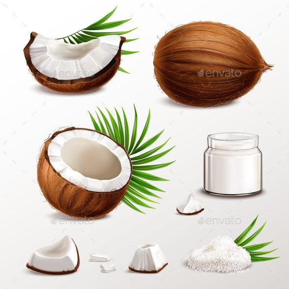 Coconut Realistic Set - Food Objects