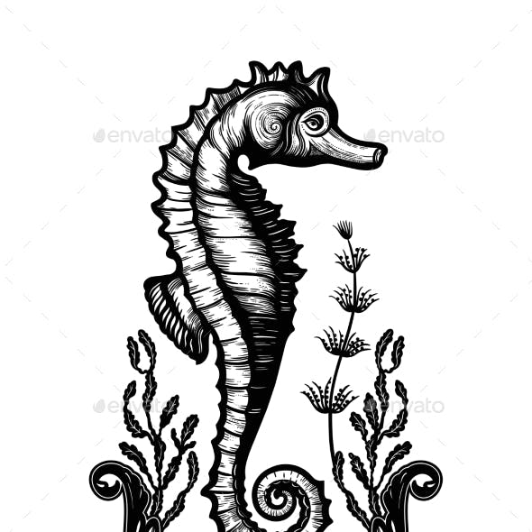 Hand Drawn Seahorse with Sea Plants