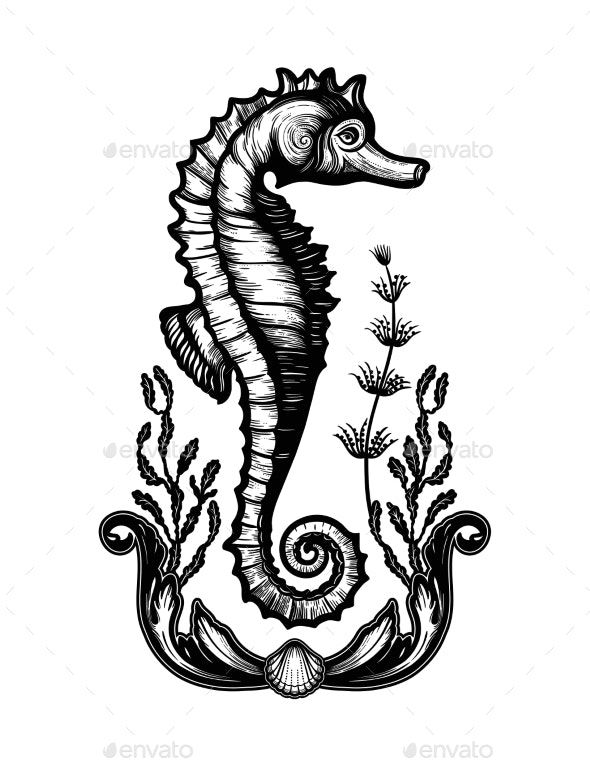 Hand Drawn Seahorse with Sea Plants - Animals Characters