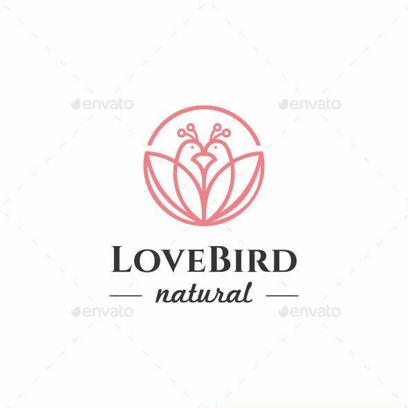 Love Bird Logo Icon