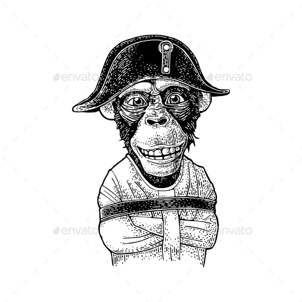 Monkey Dressed in the French Military Uniform and Straitjacket - Animals Characters