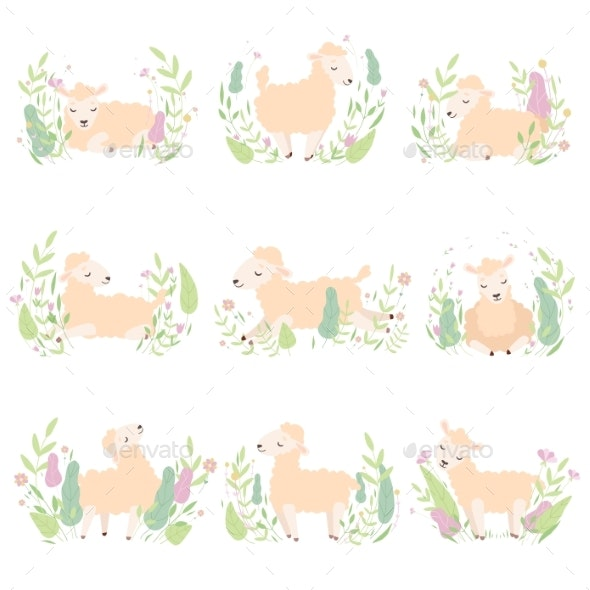 Collection of Adorable Little Lambs on Beautiful - Animals Characters