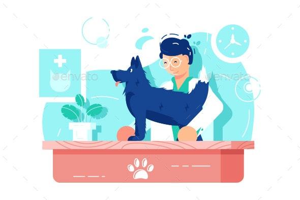 Funny Dog at Vet Clinic - Health/Medicine Conceptual