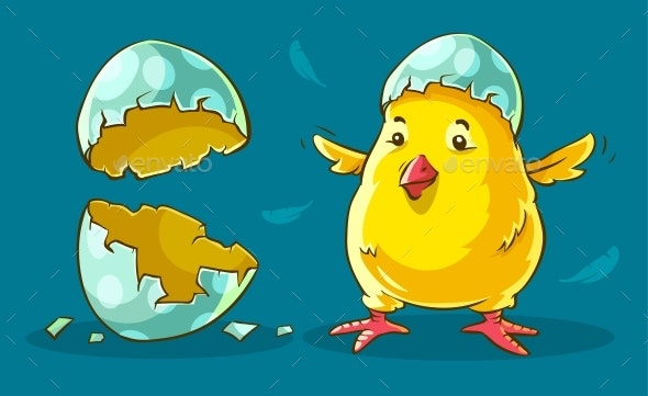 Chicken Baby Hatched from Egg - Animals Characters