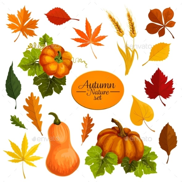 Autumn Vector Icons of Leaf Fall and Harvest - Seasons Nature