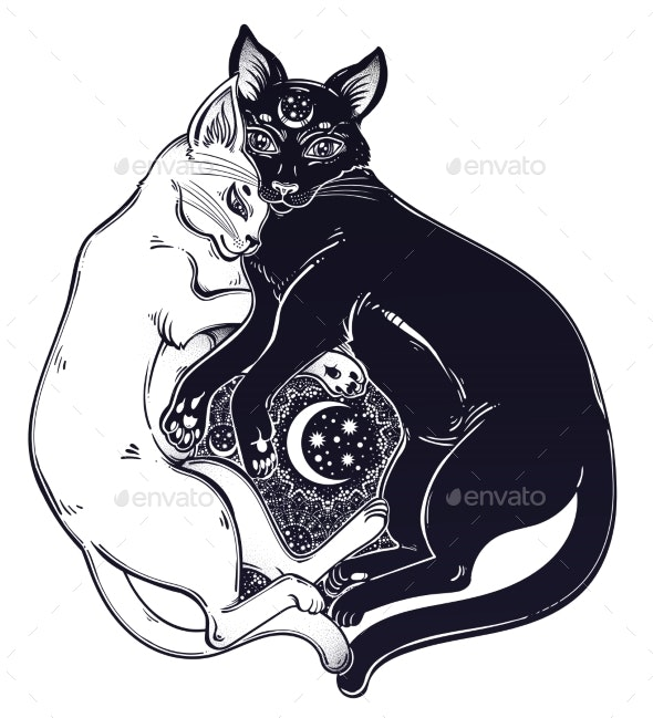Black and White Cat Dualism of Day and Night - Animals Characters