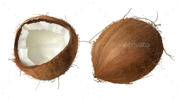 Whole and Half Broken Coconut - Food Objects