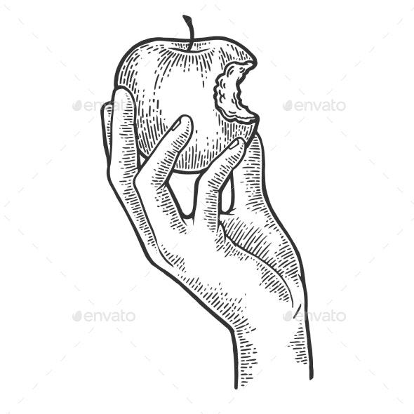 Bitten Apple in Hand Sketch Engraving Vector - Miscellaneous Vectors
