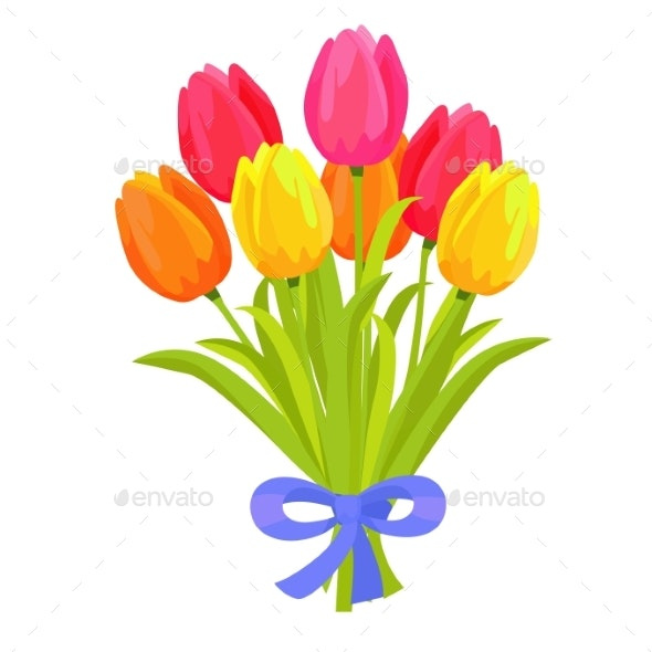 Bouquet of Seven Multicolored Tulips - Flowers & Plants Nature