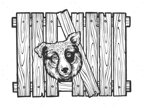 Dog Head Stuck in Fence Sketch Engraving Vector - Animals Characters