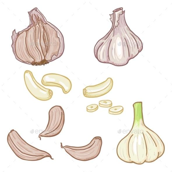Vector Set of Cartoon Garlic Illustrations - Food Objects