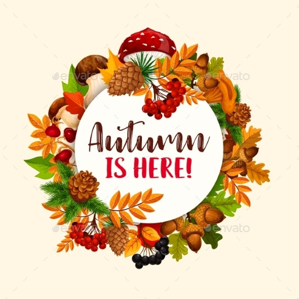 Autumn Frame - Seasons Nature