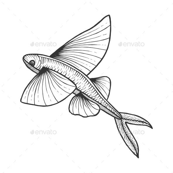 Flying Fish Sketch Engraving Vector Illustration - Miscellaneous Vectors