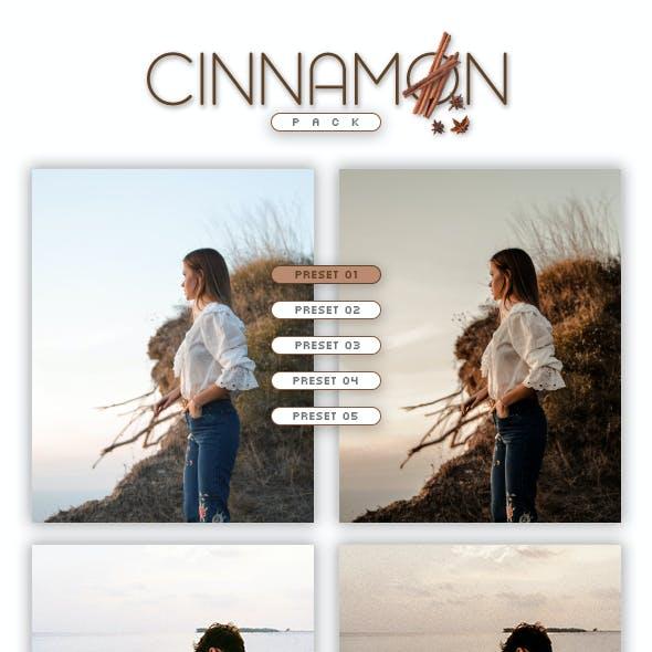 5 Lightroom Presets - Cinnamon Pack (+Mobile Version)