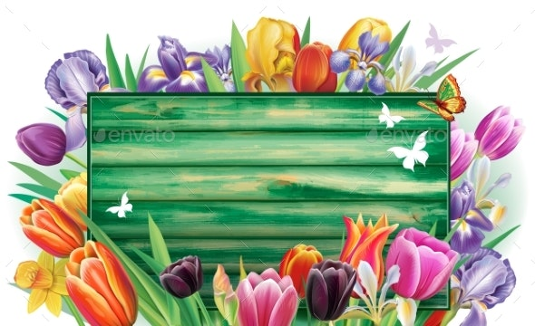 Banner with Multicolor Spring Flowers - Flowers & Plants Nature