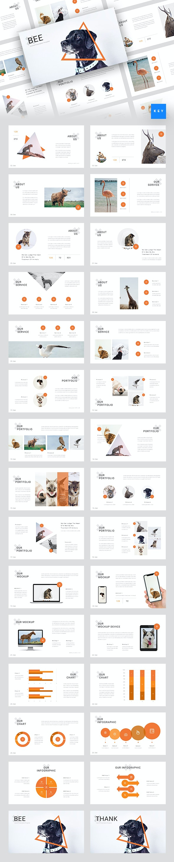 Bee - Animal & Pet Services Keynote Template - Business Keynote Templates