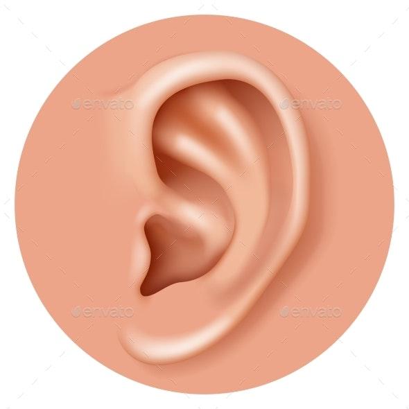 Closeup Ear Organ Hearing Human Health Care - Miscellaneous Vectors